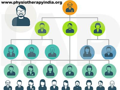 Recommended Hierarchy in Physiotherapy College (Academics)